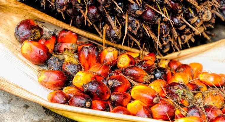 Palm oil in soap